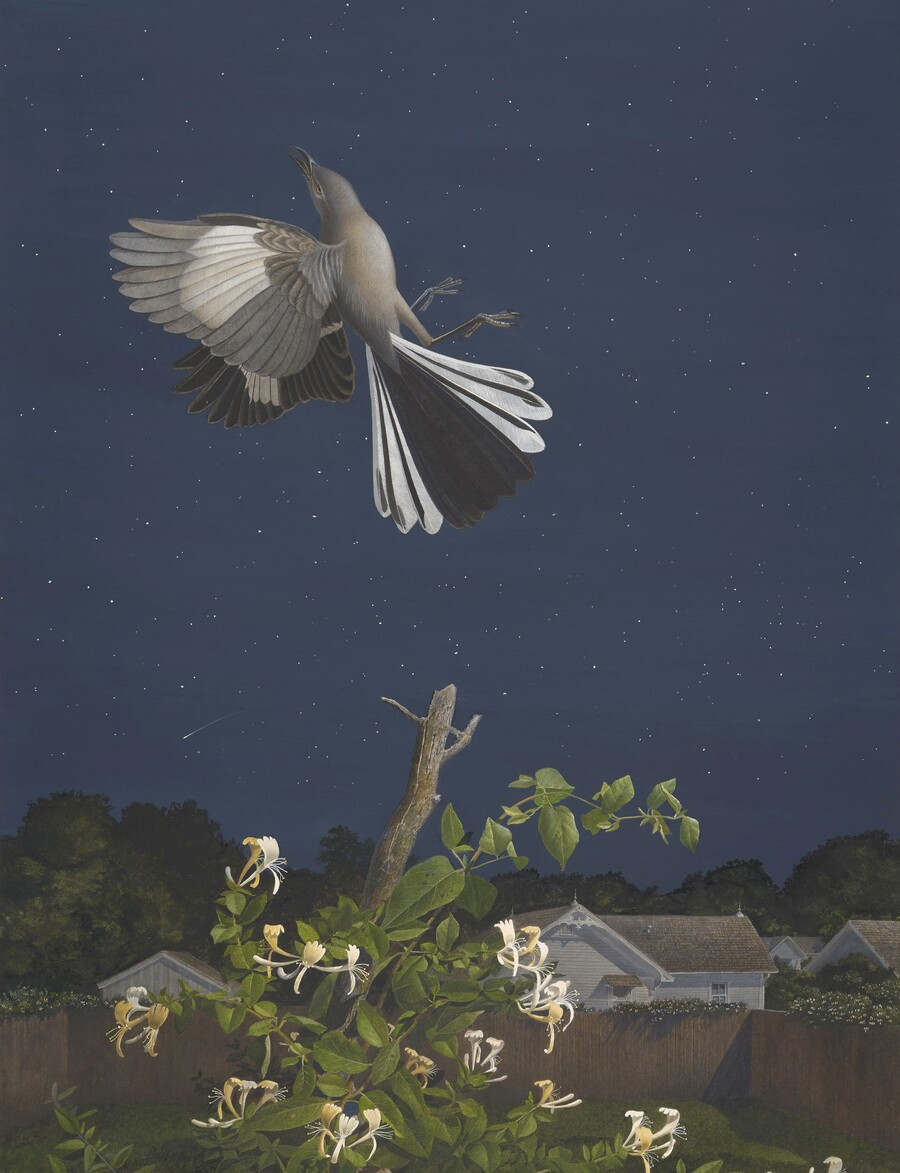 Scott Gentling (1942–2011), Stuart Gentling (1942–2006), Mockingbird, June 16, 1985