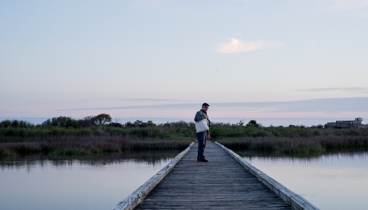 Mark Dion at Galveston Island State Park, image © Dornith Doherty