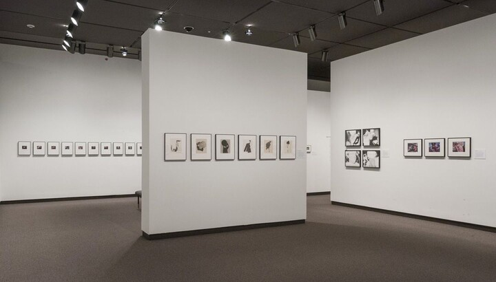 View of a gallery with white walls. Framed photography hangs on all walls.