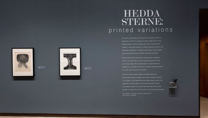 Exhibition title wall with title and introductory text to the right of two framed prints.