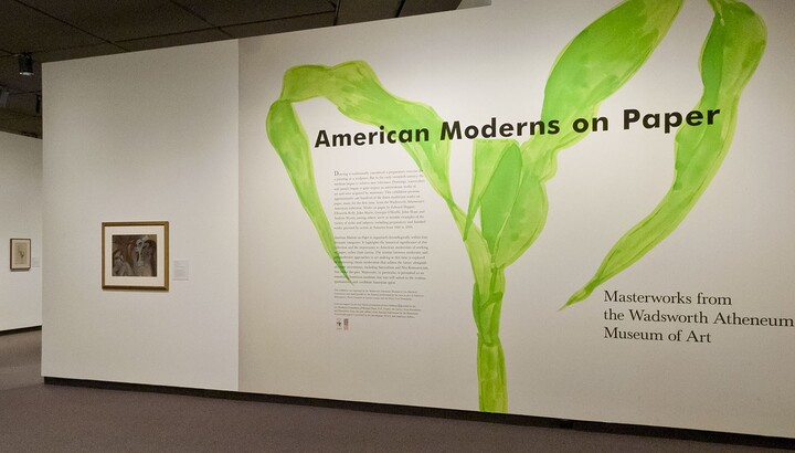 Exhibition title wall. Wall is white with a large green plant stem behind the exhibition title; to the left is a framed print.