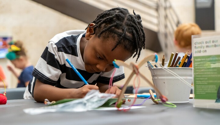 A child holds a pencil in his right hand and is focused on the art project in front of him
