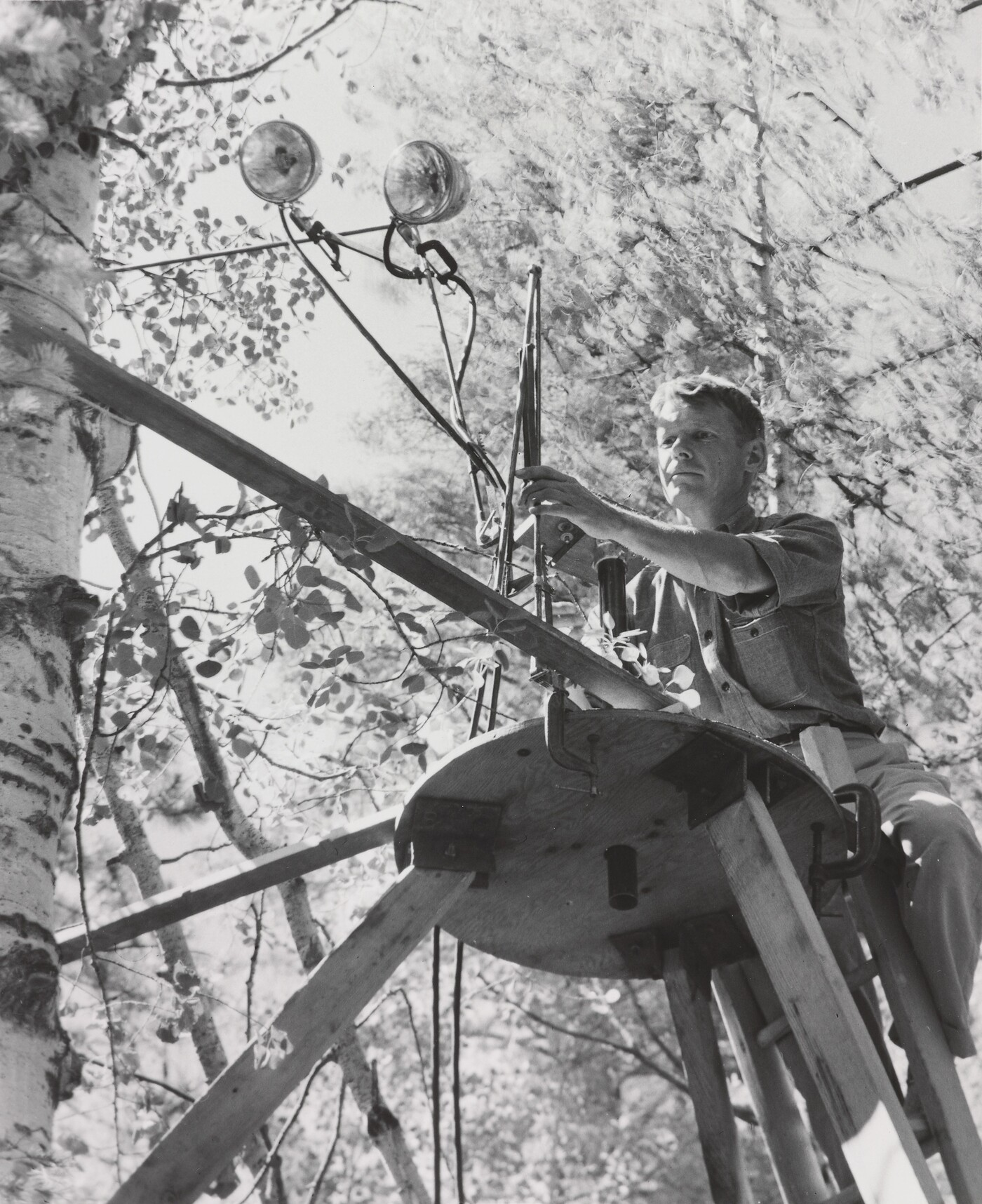 Laura Gilpin (1891–1979), Eliot Porter Setting Up Equipment for Photographing a Lewis' Woodpecker, New Mexico, 1952