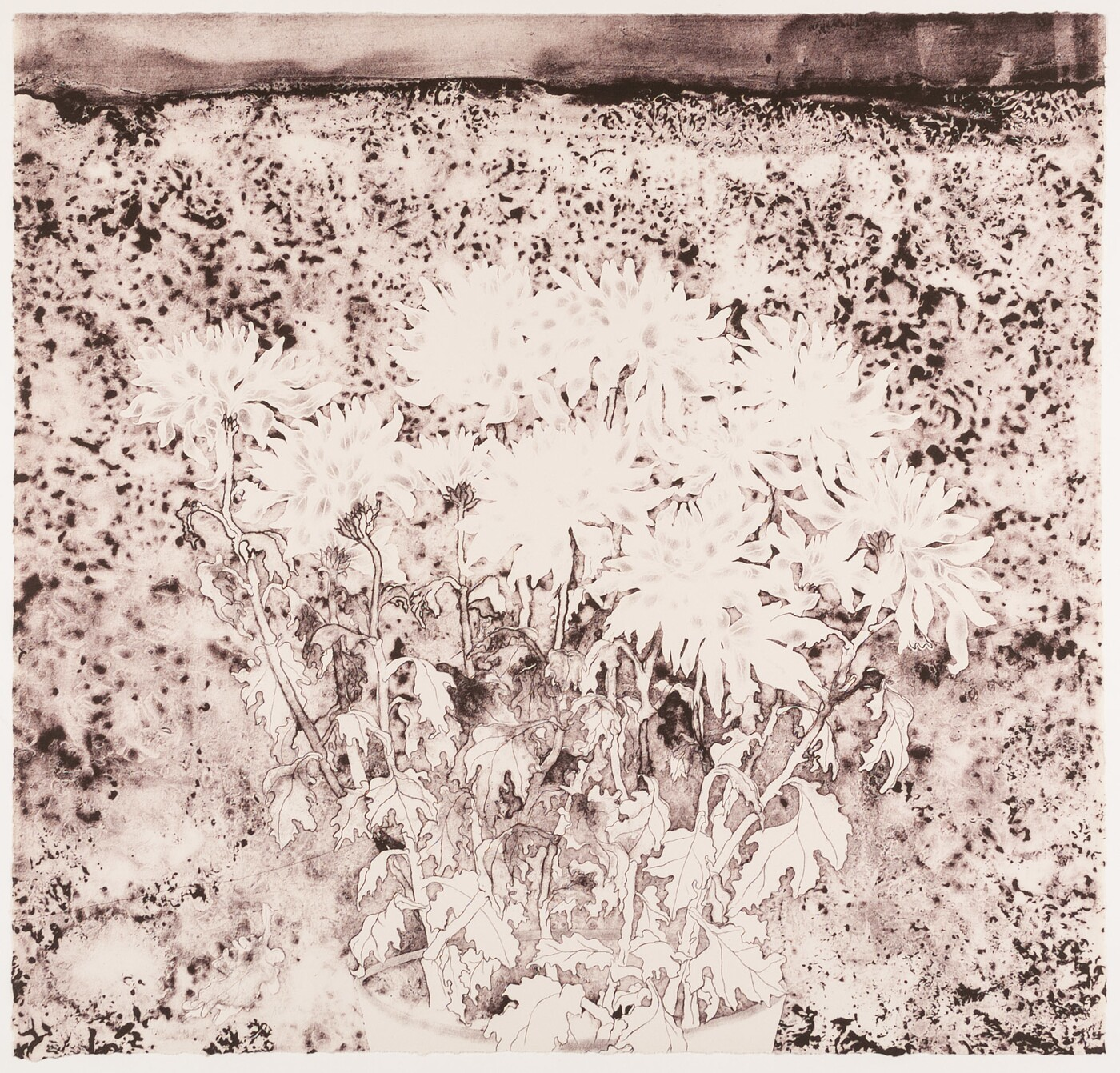 A lithograph depicting a field of flowers in dark brown/black and white