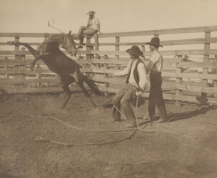 Erwin E. Smith (1886–1947), Claud Jefferies working with a bronc in a corral on the Matador Land and Cattle Company, ca. 1936, Gelatin silver print