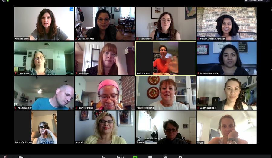 Screenshot of Zoom call with 16 different participants